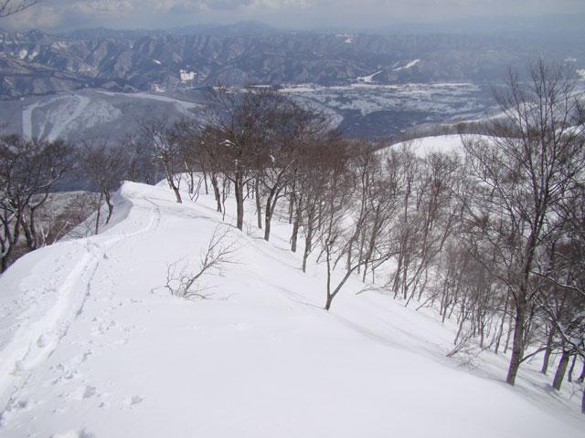 小日向山の東尾根