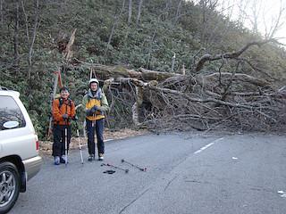 倒木が道路を遮る地点から歩き出す