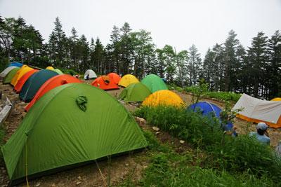 三伏峠のテント村