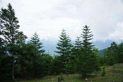 開けているけれど白峰三山は雲に隠れて
