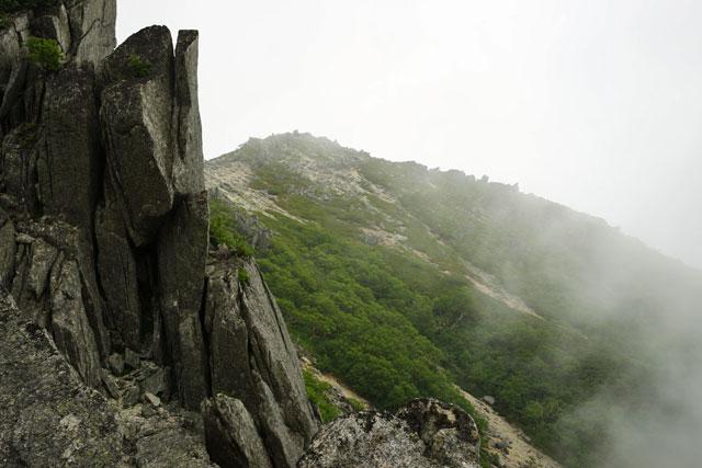 振り返って見上げる観音岳