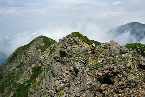 大沢岳から先には小ピークが連続