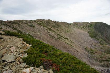 赤石岳の広大な山頂部