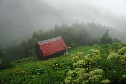 小屋とお花畑
