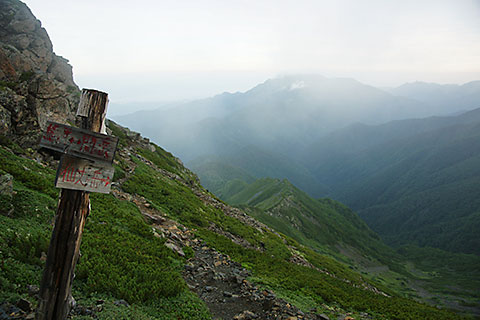仙丈ヶ岳への分岐