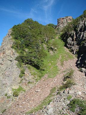中ノ川乗越からガレ場の急斜面を振り返る