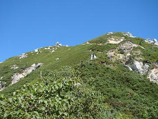 越百山への最後の登り