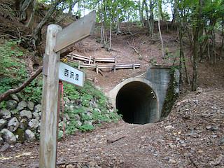 森林鉄道跡のトンネル