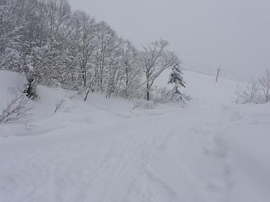 栂池高原スキー場のゲレンデに帰還