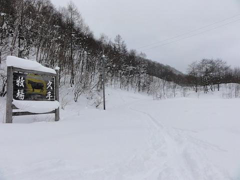 久手牧場の積雪は十分