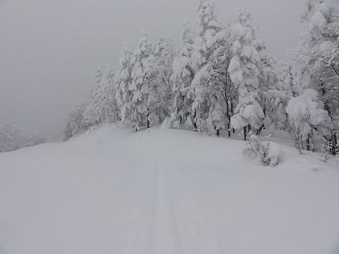 乗鞍スカイライン上も積雪は多い