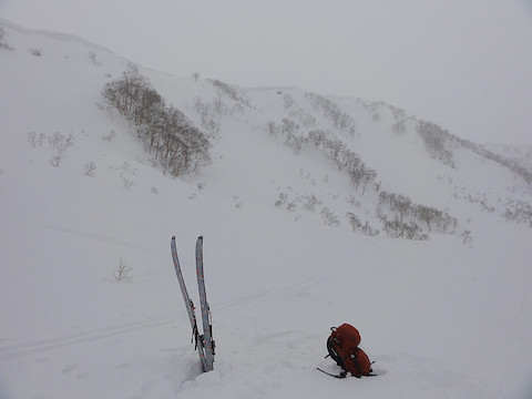 三田原山を見上げる