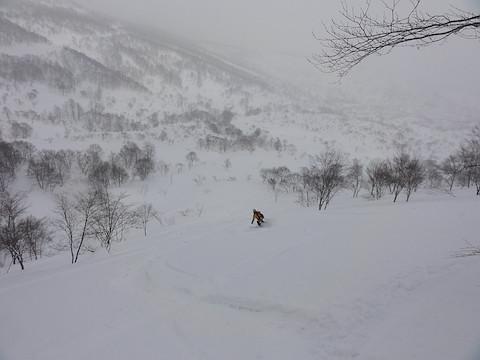 広い雪原へ滑りこむ