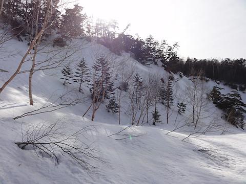 この斜面を登って上俵山へ