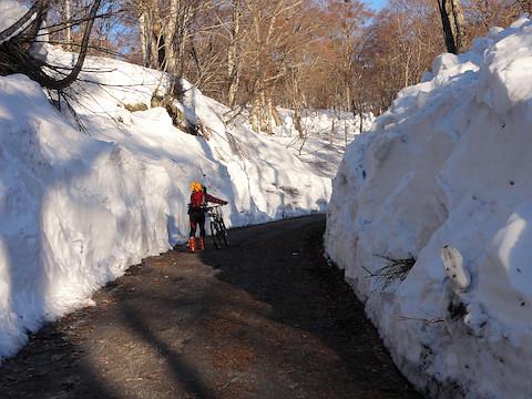 林道の両脇にはまだ高い雪壁が