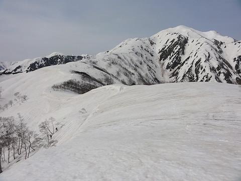 小倉山から越後駒ヶ岳を望む