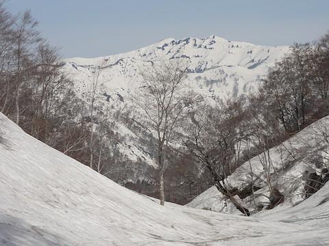 ムジナ沢から見た守門岳
