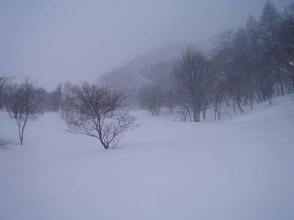 雪が降り続くヤカイ沢の下部