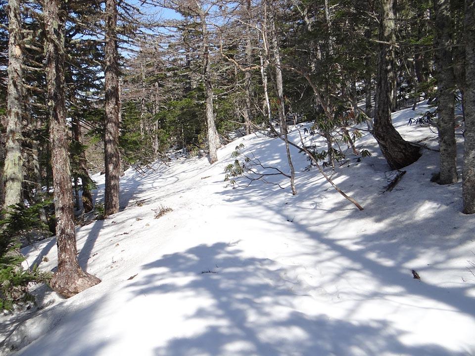 まだ雪を被った御中道