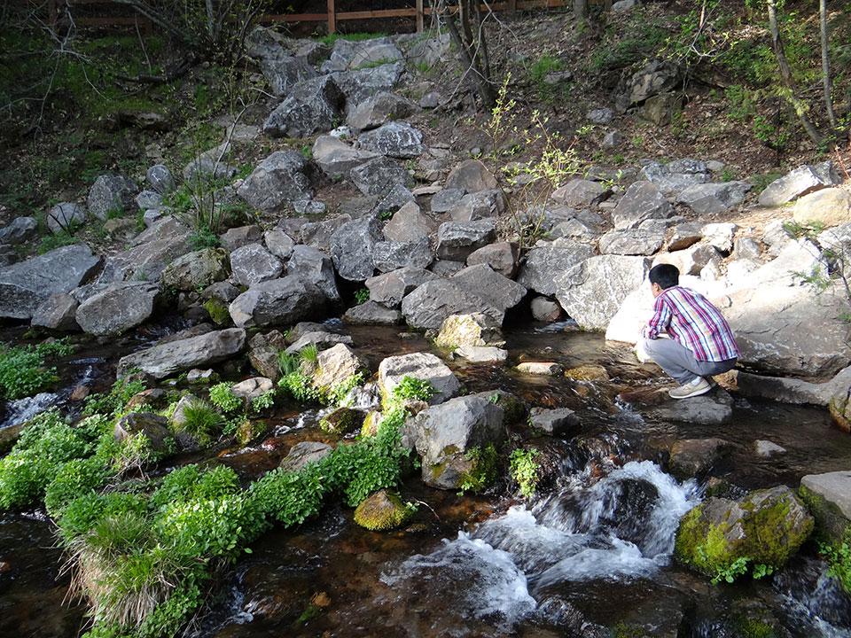 サクラメント川の水源地