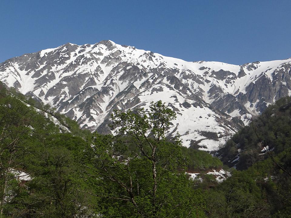 猿倉から白馬岳を見上げる