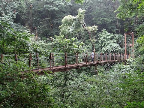 4号路の途中にある吊り橋