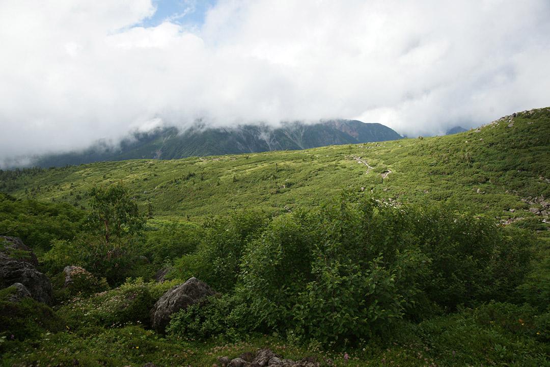 薬師岳は雲の中