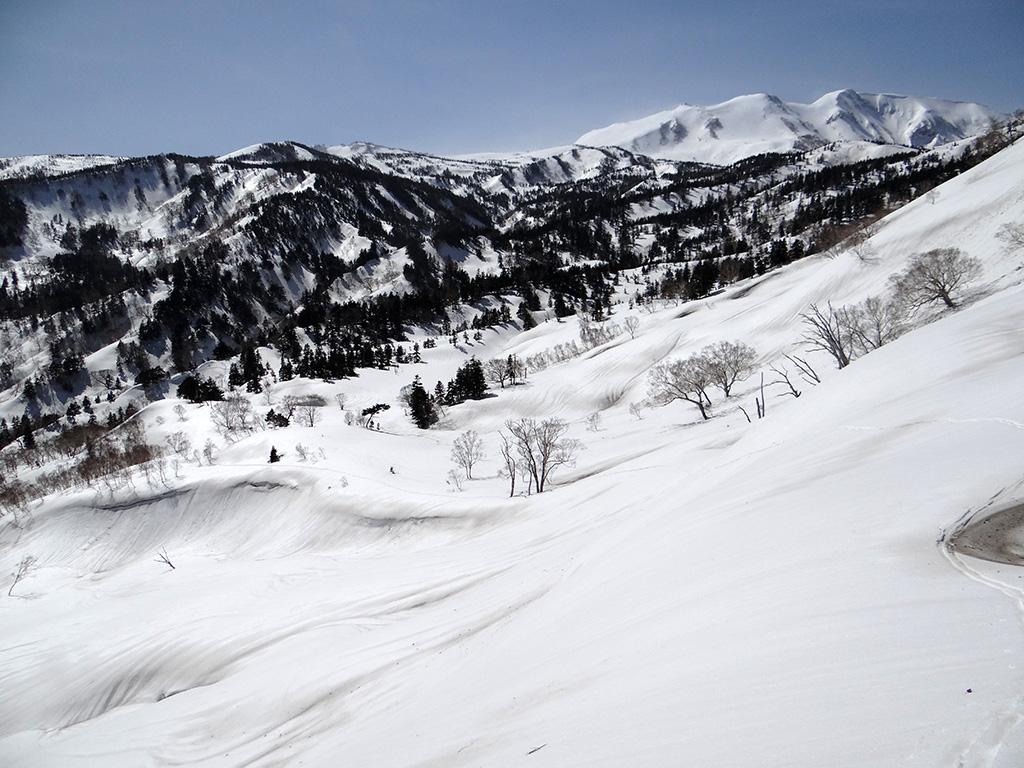 唐松沢、白馬乗鞍岳を振り返る