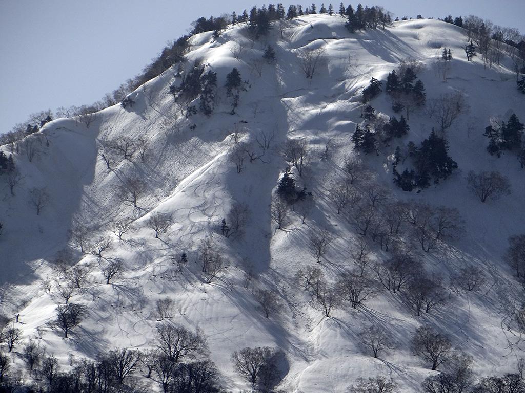 林道登り返しの途中、横前倉山を振り返る