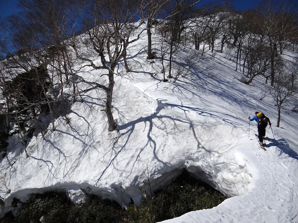 五地蔵山の東尾根