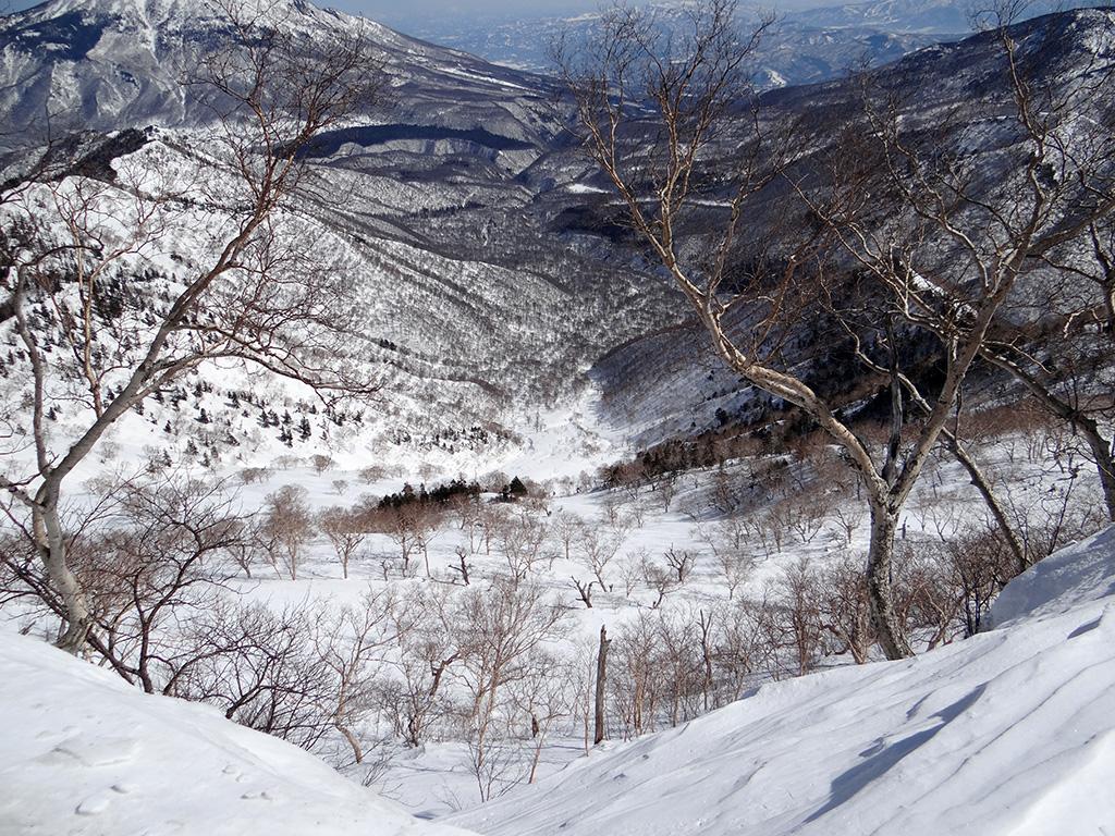 乙妻山山頂付近から北東斜面を見下ろす