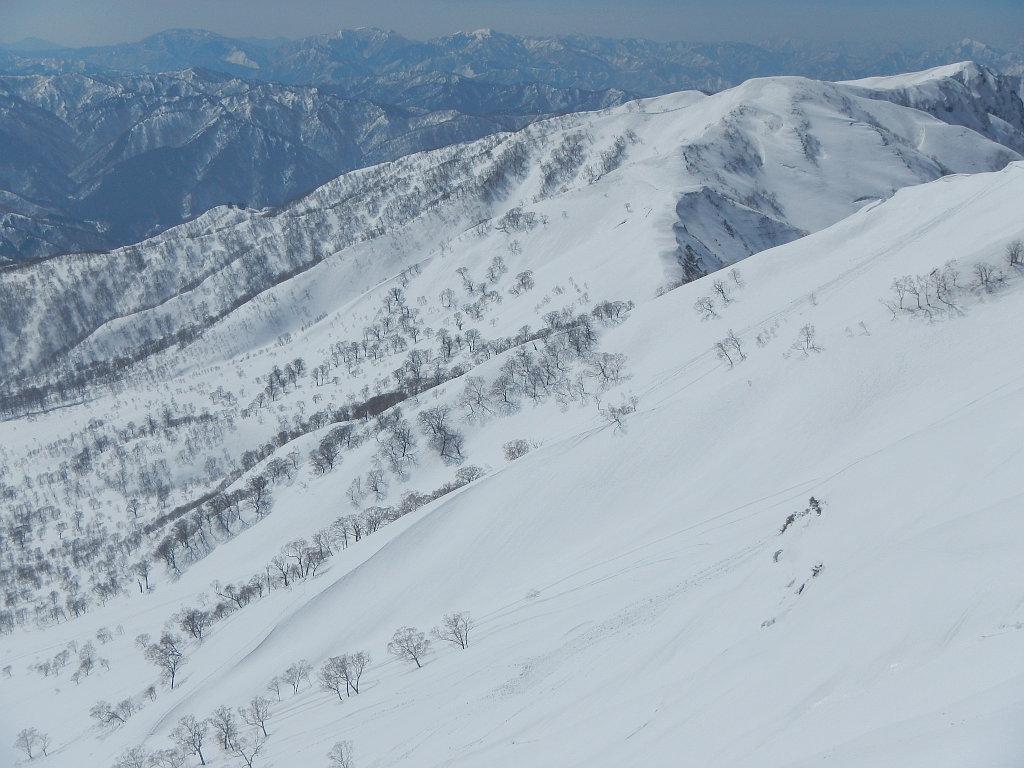 小白山へ続く稜線